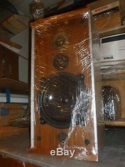 1970s Pair of Vintage B&W Bowers & Wilkins DM 4 Speakers. Super RARE